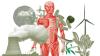 UCA: Conférence / Débat, Recherche : Santé et environnement